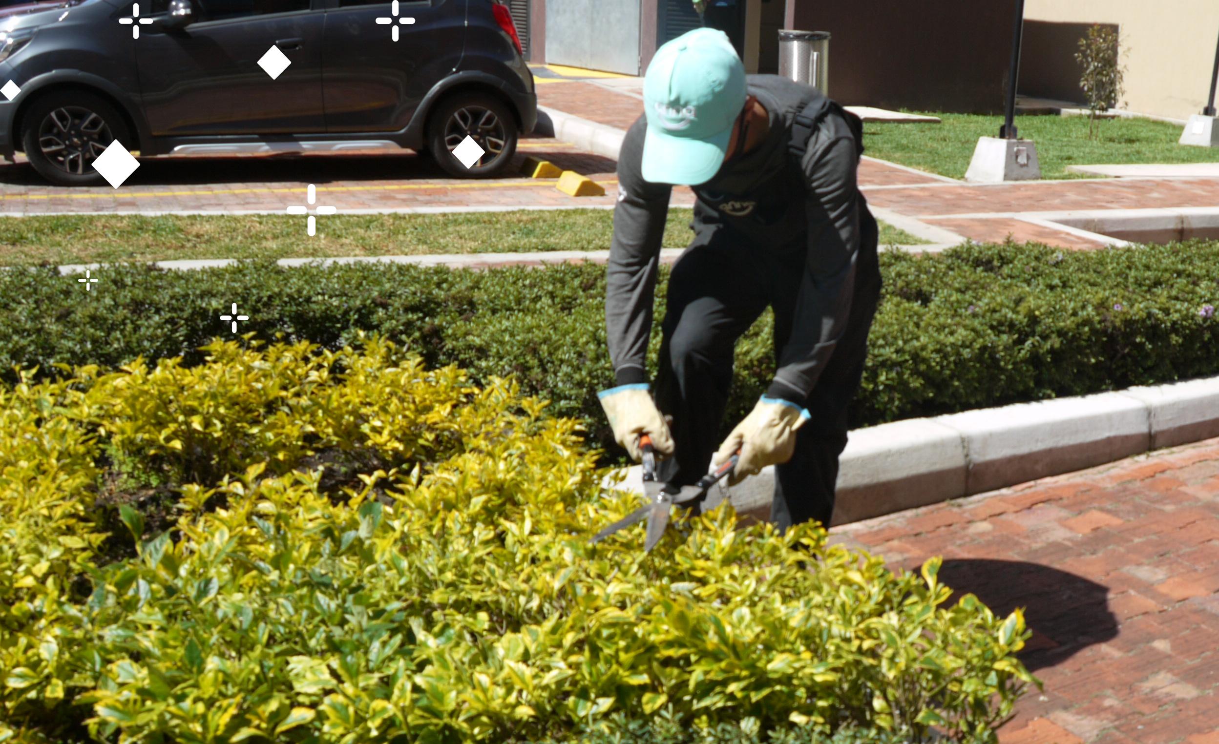 jardinero Anna trabajando